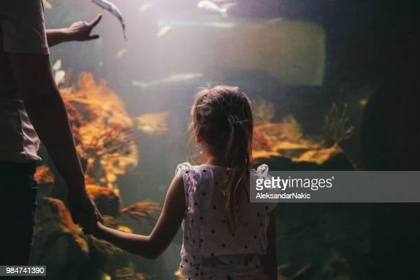 Entdecken Sie die Unterwasserwelt mit meiner Mutter