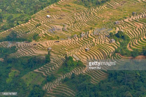 discovery in ha giang - limestone pavement stock pictures, royalty-free photos & images