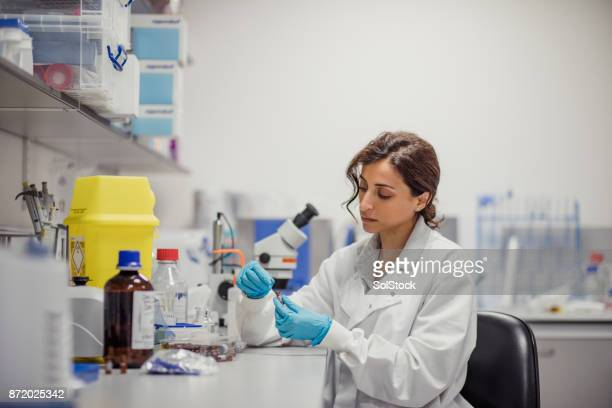 disease diagnosis laboratory - medical stock photos and pictures