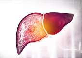 Diseased human liver on science background