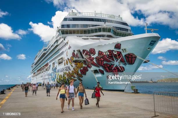 uitstappen in saint martin - sint maarten caraïbisch eiland stockfoto's en -beelden