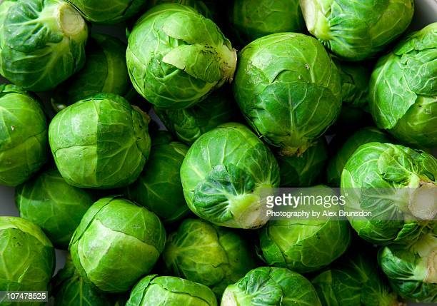 a dish full of uncooked, unpeeled sprouts - 芽キャベツ ストックフォトと画像