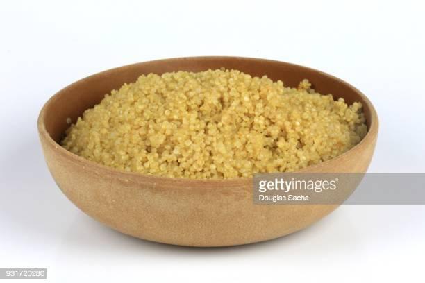 Dish of Quinoa superfood (Chenopodium quinoa)