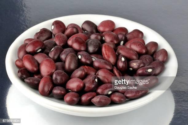 Dish of Red Chili Beans (Phaseolus vulgaris)
