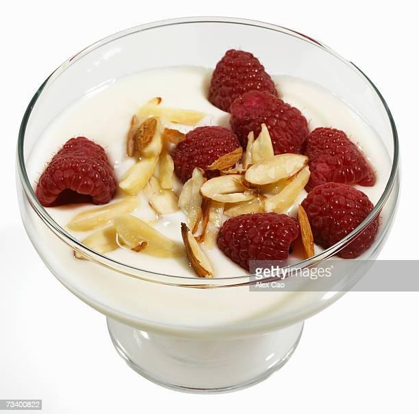 Dish of yogurt with fresh rasberries and chopped almonds