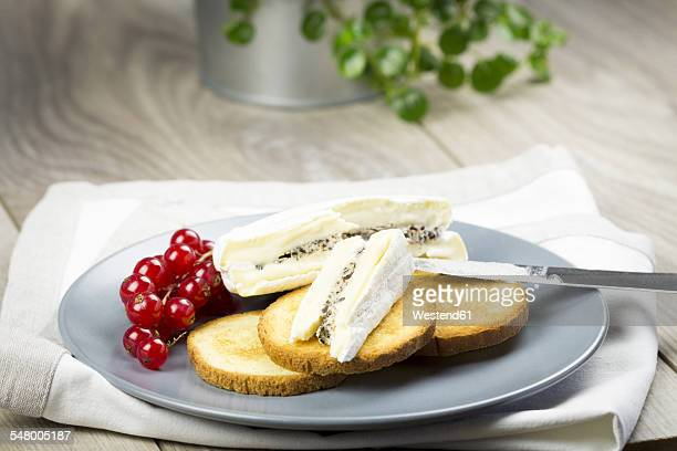 Dish with camembert, brioche toast and lingonberries
