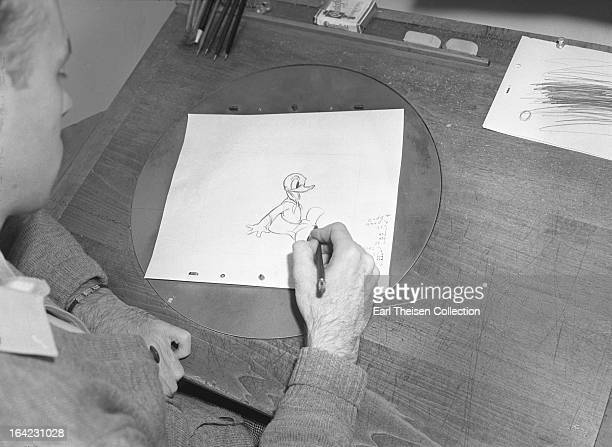 Disney animator works on a sketch of Donald Duck circa 1936 in Los Angeles California