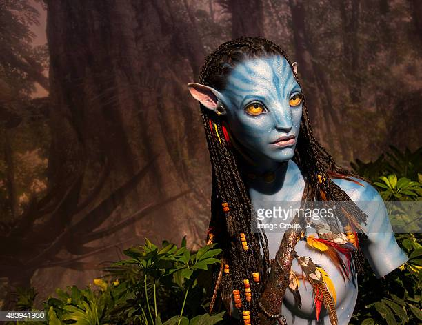 Disney Parks at D23 EXPO 2015 The Walt Disney Parks and Resorts show floor pavilion gives D23 EXPO 2015 guests an indepth look at Pandora when they...