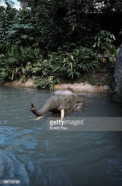 Disneyworld Park In Orlando Florida En Floride au parc de Disneyworld dans un bassin d'eau bordé de végétation un éléphant automate sortant la tête...