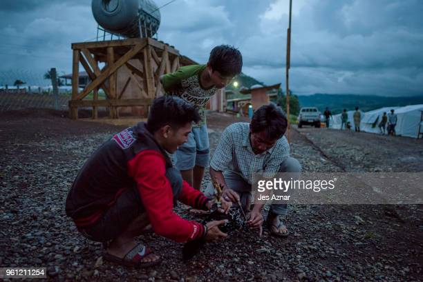Displaced Marawi residents kills a chicken and drains its blood as a local ritual before the start of Ramadan inside the Sarimanok tent city on May...