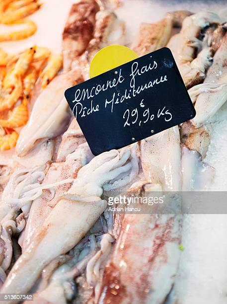 Display of fresh squid (European squid (Loligo vulgaris)) in ice for sale at traditional market in France
