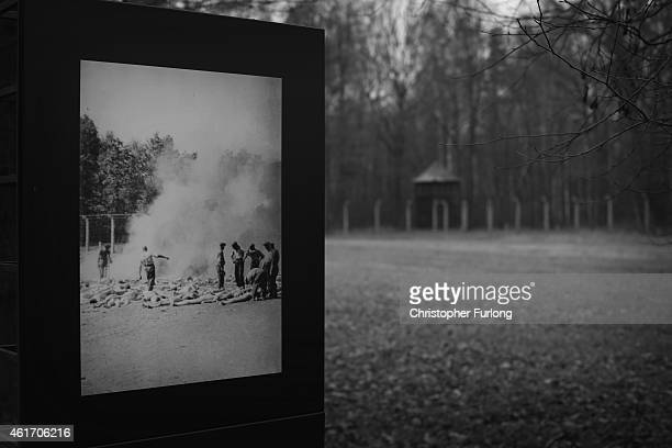 A display photograph shows the field where bodies of thousands of victims were cremated at the Auschwitz II Birkenau extermination camp on November...