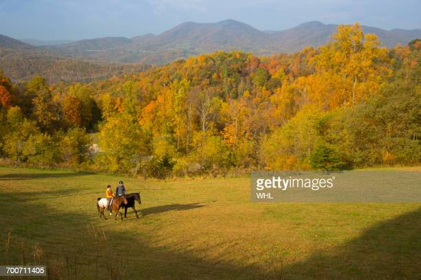 Distant Caucasian couple horseback riding in field