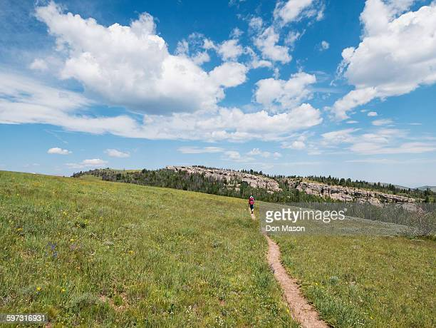 Distant Japanese hiker walking on dirt path