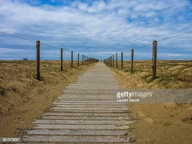 distant silhouette, tarnos beach, france - laurent sauvel photos et images de collection