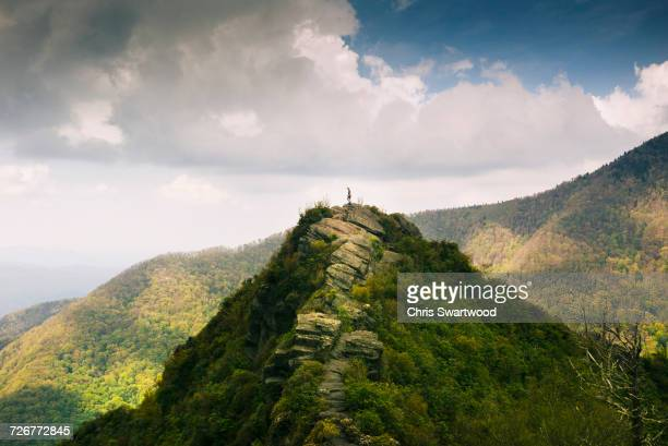distant view of a man standing on a mountain top in the  smoky mountain national park - テネシー州 ストックフォトと画像