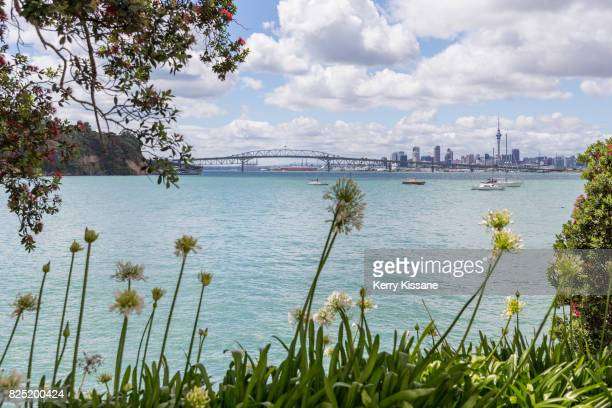 distant view of auckland city - waitemata harbor stock photos and pictures