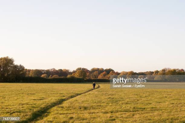 distant view of man standing amidst grassy field against clear sky - ラニーメイド ストックフォトと画像