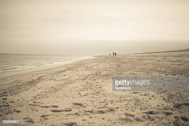 distant view of two people strolling on beach, truro, massachusetts, cape cod, usa - heshphoto stock pictures, royalty-free photos & images
