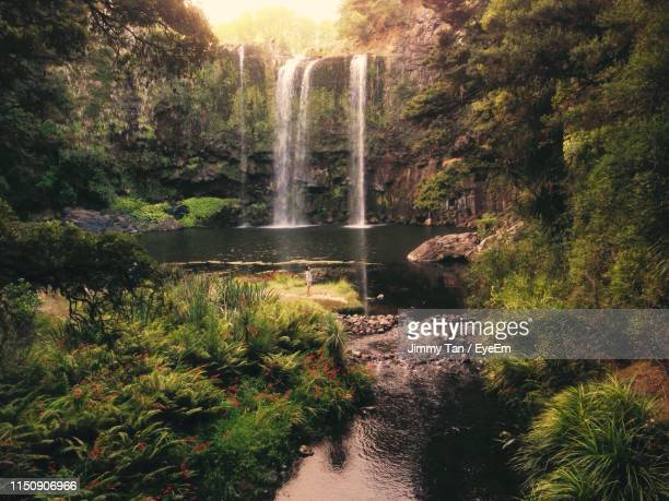 distant view of woman standing by waterfall in forest - whangarei heads stock-fotos und bilder
