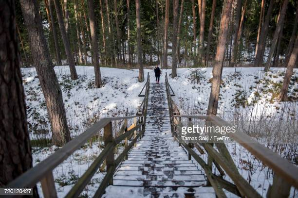Distant View Of Woman Standing On Snow Covered Steps Against Trees In Forest