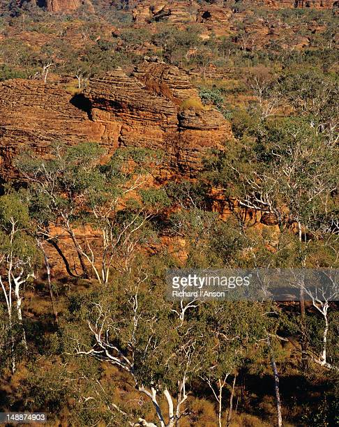 distinctive sandstone formation below the escarpment in the keep river national park. - escarpment stock pictures, royalty-free photos & images