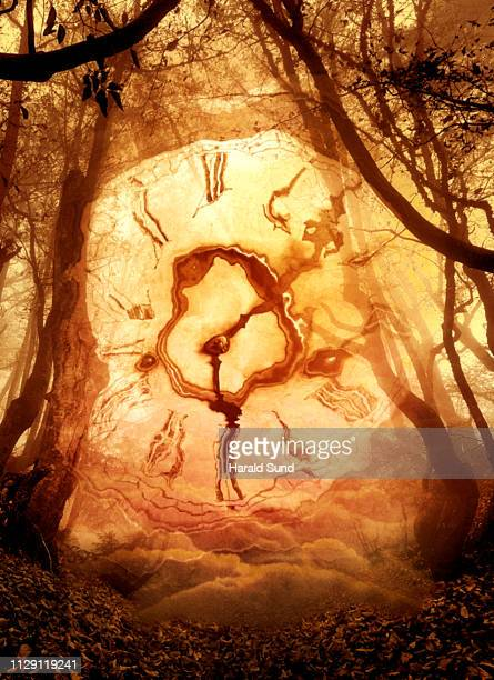 Distorted appearing vintage antique grandfather clock face with Roman numeral numbers and hour and second hands in a fantasy, surreal, dreamlike forest scene.