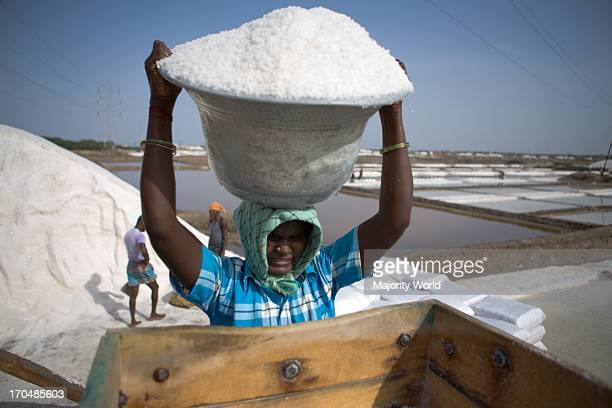 A Distressed Seasonal Migrant Worker works at a salt plant in Tutcorin Tamilnadu India This type of temporary migration is a growing phenomenon in...