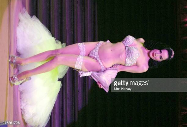 Dita Von Teese during The Blush Ball in Aid of Breast Cancer Haven Sponsored by Henri Zimand Inside at Natural History Museum in London Great Britain