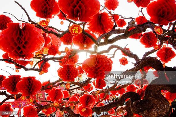 ditan park - chinese new year stock pictures, royalty-free photos & images