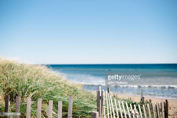 ditch plains beach in montauk - focus on foreground stock pictures, royalty-free photos & images