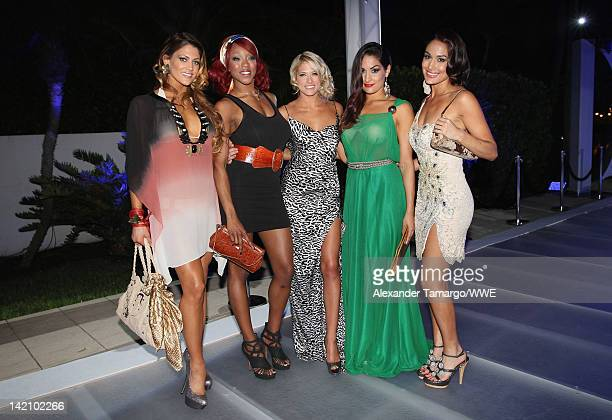 WWE Divas Eve Alicia Fox Kelly Kelly Nikki Bella and Brie Bella attend WrestleMania Premiere Party A Celebration of Miami Art and Fashion on March 29...