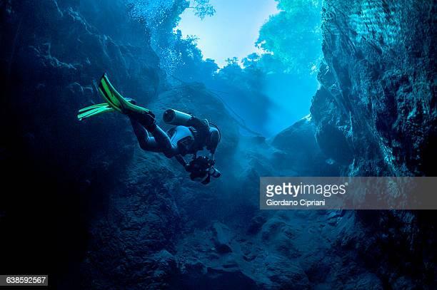 dive in lagoa misteriosa cenote, brazil - sporttauchen stock-fotos und bilder