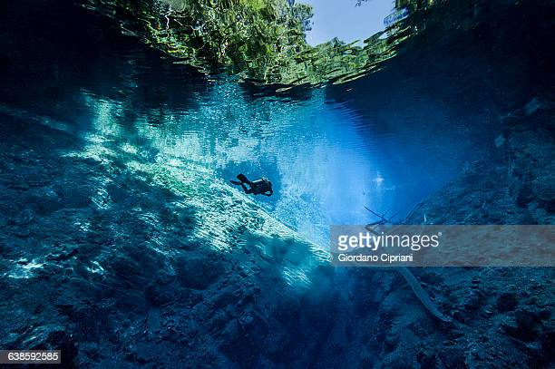 dive in lagoa misteriosa cenote, brazil - mato grosso do sul state stock pictures, royalty-free photos & images