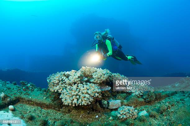 Diver and Corals at Flight Deck on USS Saratoga, Marshall Islands, Bikini Atoll, Micronesia, Pacific Ocean
