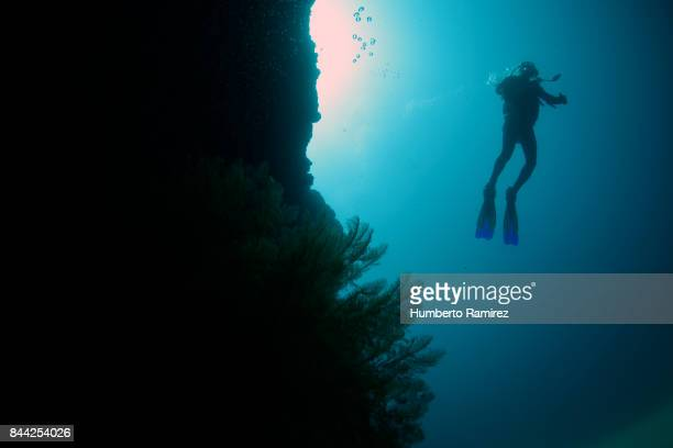 Diver and Vertical Wall.