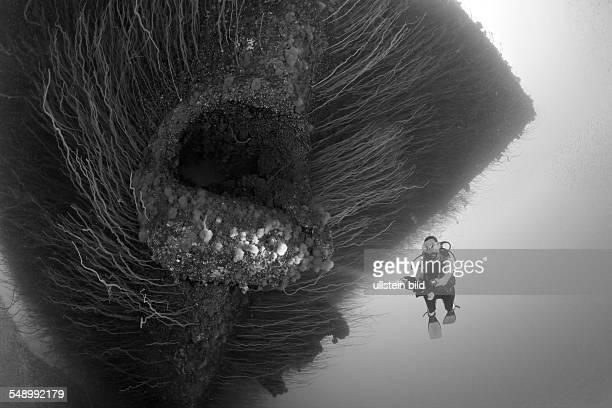 Diver at Anchor Hawse Hole at Bow of USS Saratoga, Marshall Islands, Bikini Atoll, Micronesia, Pacific Ocean