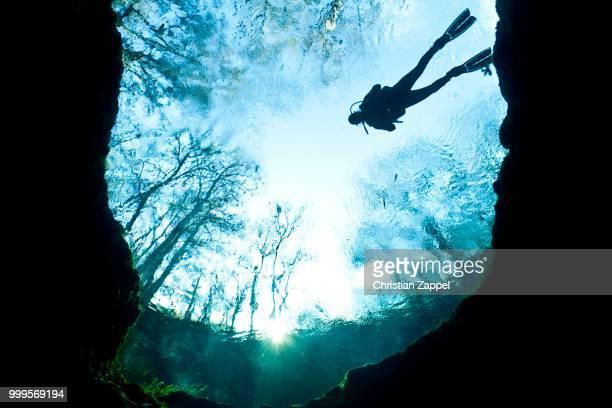 Diver at Devil's Eye, the entrance to a huge cave system, Santa Fe River, Florida, United States