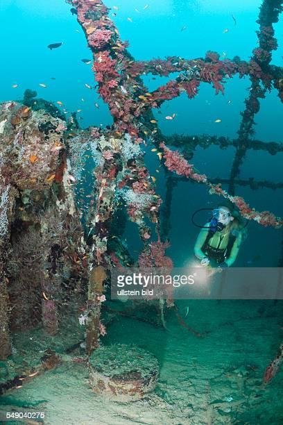 Diver at Kuda Giri Wreck South Male Atoll Maldives