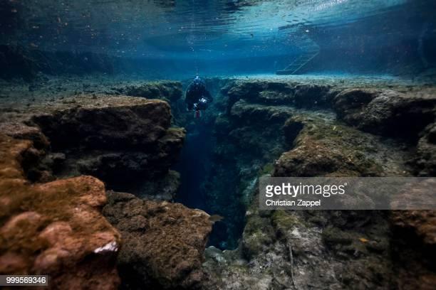 Diver at Little Devil in Santa Fe River, Florida, United States