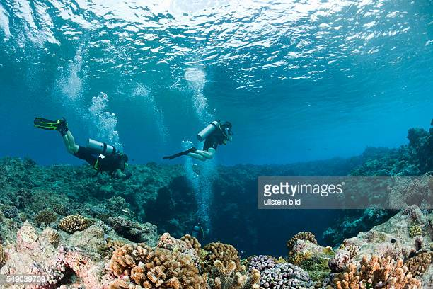 Diver at upper Entrance of Blue Hole Cave Micronesia Palau