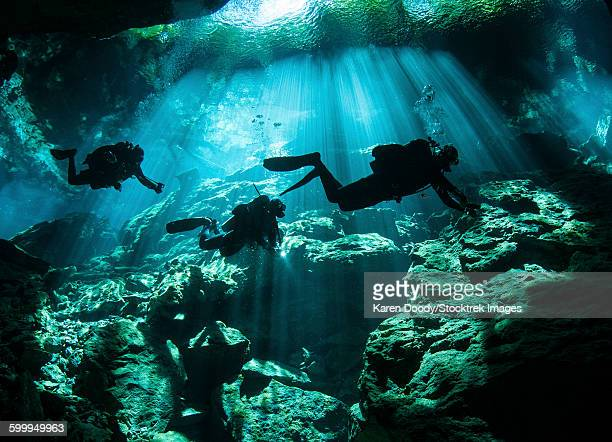 Diver enters the cavern system at Chac Mool cenote in the Riviera Maya area of Mexicos Yucatan Peninsula.