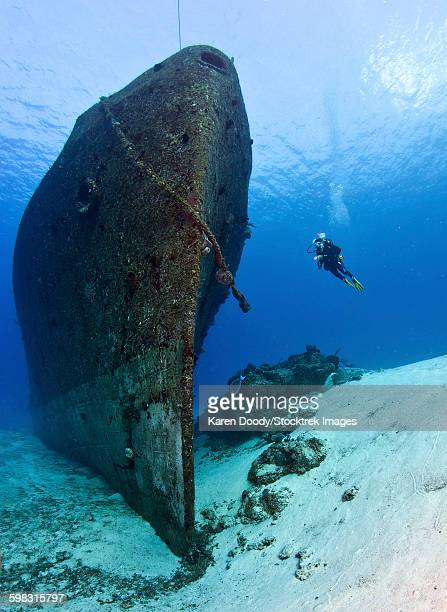 Diver exploring the ARM General Felipe Xicotencatl (C53) shipwreck in Cozumel, Mexico.
