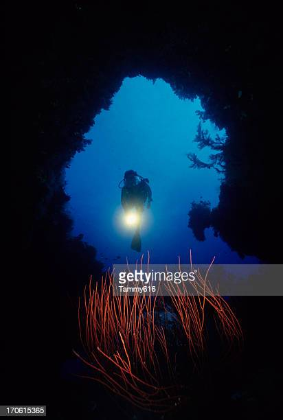 diver exploring underwater  cave - aqualung diving equipment stock pictures, royalty-free photos & images