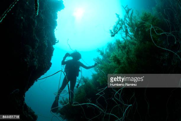 Diver in a vertical wall.