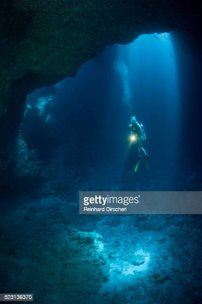 diver in blue hole cave, micronesia, palau - lighthouse reef stock pictures, royalty-free photos & images