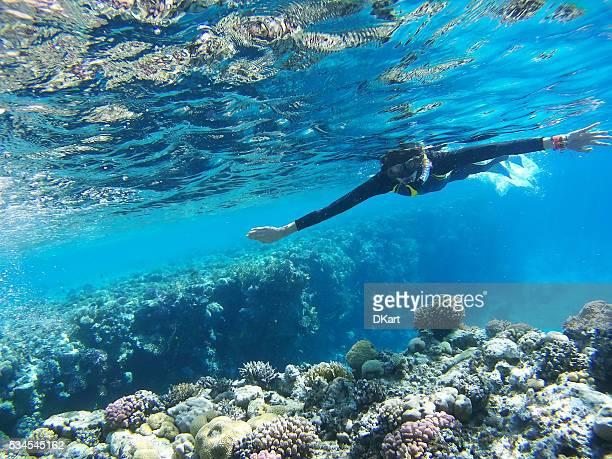 Plongeur dans la mer d'un bleu profond