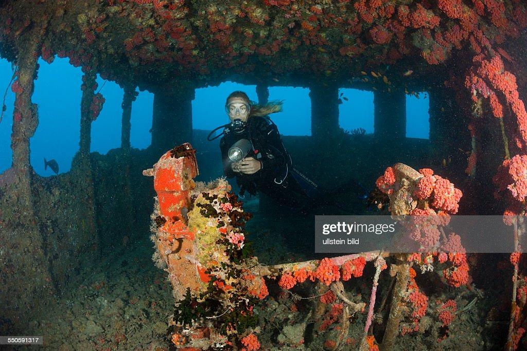 Diver inside Bridge of Maldive Victory Wreck, North Male Atoll, Maldives : News Photo