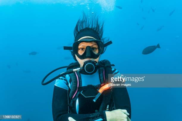 diver looking at camera at great barrier reef - aqualung diving equipment stock pictures, royalty-free photos & images