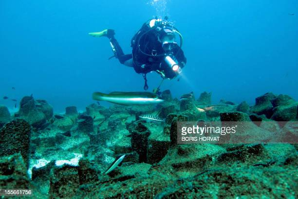 A diver observes Roman ancient amphoras down onto sand on December 4 2011 off the coast of the Frioul island southern France Discovered in 1952 by...
